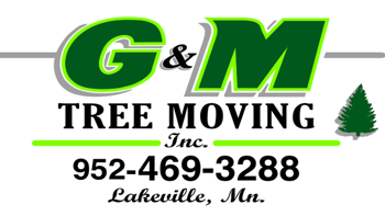 G & M Tree Moving